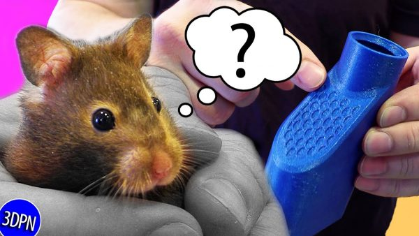 Does My Hamster Care About 3D Printing? Practical Prints for Pets!